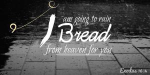 Exodus 16:4